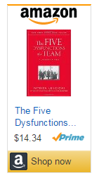 FiveDysfuctionsAmazon