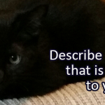 Writing Prompt for December 7: Animal
