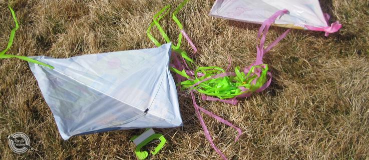 Inference Image: Kites