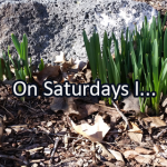 Writing Prompt for March 23: Saturdays