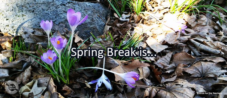 Writing Prompt for March 26: Spring Break