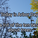 Writing Prompt for April 28: Arbor Day