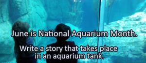 Writing Prompt for June 13: Aquariums
