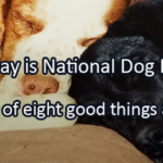 Writing Prompt for August 26: Dogs