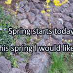 Writing Prompt for March 20: Spring!